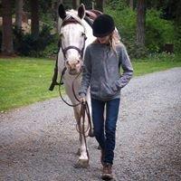 Encore Therepuetic Horsemanship