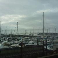 Embarcadero resort in Newport