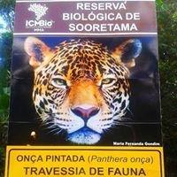 Reserva Biológica de Sooretama