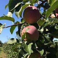 Wheelbarrow Orchard