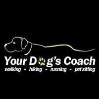 Your Dog's Coach