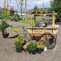 Grandescapes Nursery & Landscaping