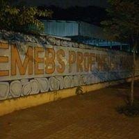 Emebs Prof. Neusa Bassetto