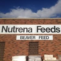 Beaver Feed