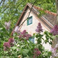 """""""The Bat Barn"""" -  Country Guest House and Hunting Lodge - Hungary"""