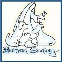 Blue Heart Sanctuary