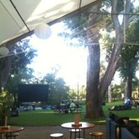 Movies in the Vineyard at Cape Mentelle Winery