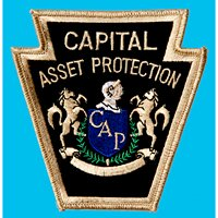 Capital Asset Protection, Inc.