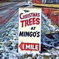 Mingo's Products