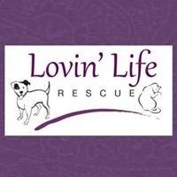 Lovin' Life Rescue