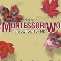 Montessori Works Preschool