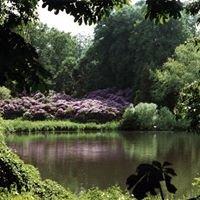 Arboretum Lehmkuhlen