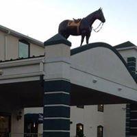 Turf Rodeway Inn & Suites Charles Town, WV