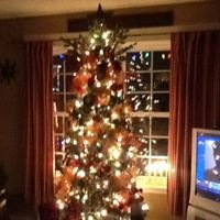 """Yule love it"""" christmas decorating services"""