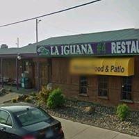 La Iguana Mexican Restaurant #4