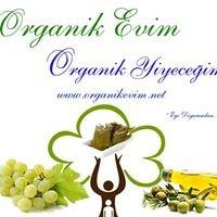 Organik Evim & Zeytinyağı, Üzüm, Yaprak