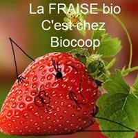 Biocoop Le Grenier Vert Belfort et Valdoie