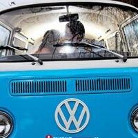 The Vintage Volkswagen Bus
