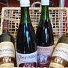 Vinhos Sucos e Espumantes Bennato