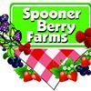 Spooner Berry Farms-Olympia