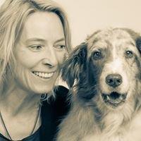 Dog-Care Tierheilpraxis und Physiotherapie für Hunde
