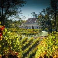 French Vineyard Vacations