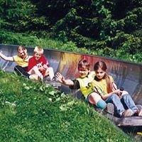Sommerrodelbahn Klingenthal/Mühlleithen