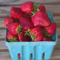 Freeland's Strawberries (Vegetable Stand)