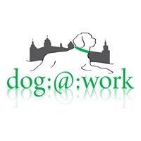 Dog:at:work - Hundetraining Würzburg