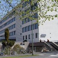 Matthias-Grünewald-Gymnasium