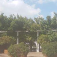 Ronit Farm