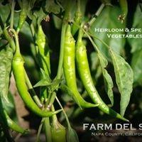 Farm Del Sol