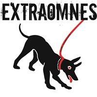 Extraomnes