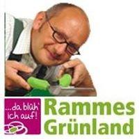Rammes Grünland