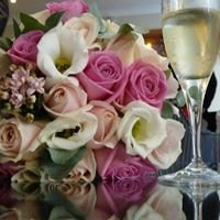 Wedding and Party Planning - Surge Events