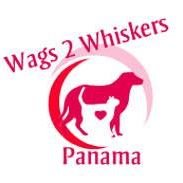 Wags 2 Whiskers Pet Sitting