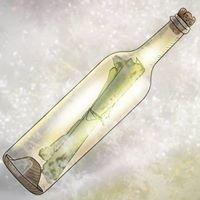 Flaskeposter