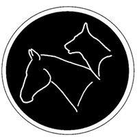 Dustie - Animal Osteopathy International