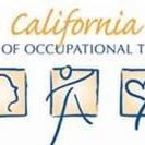 Occupational Therapy Board