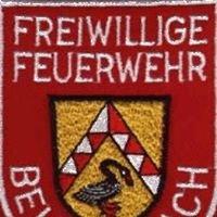 FFW Beutelsbach