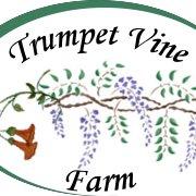 Trumpet Vine Farm