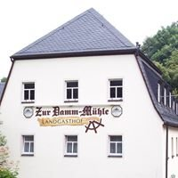 """Landgasthof """"Zur Damm-Mühle"""""""