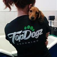Top Dogz Grooming
