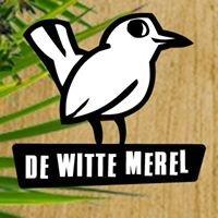 De Witte Merel - Creatieve Ervaringsgerichte Basisschool