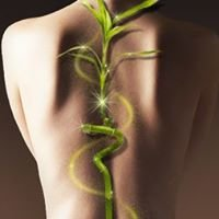 Back to Health Chiropractic and Wellness Care, PLLC