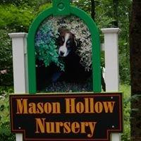 Mason Hollow Nursery