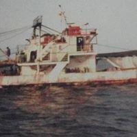 Ιχθυοπωλείο κατεψυγμένα ατλαντικού Κοκκινέλος