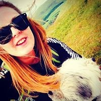 Pam's Pooches - Dog Walker, Cornwall