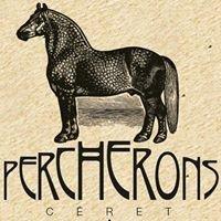 Percherons