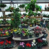 Hill's Florist